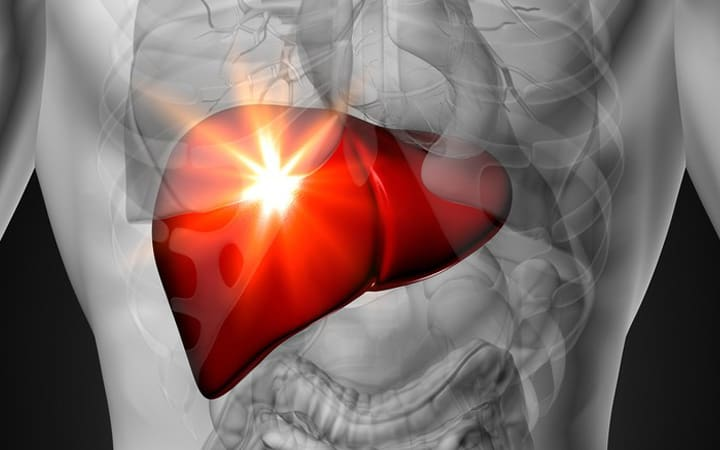 could fatty liver heal itself