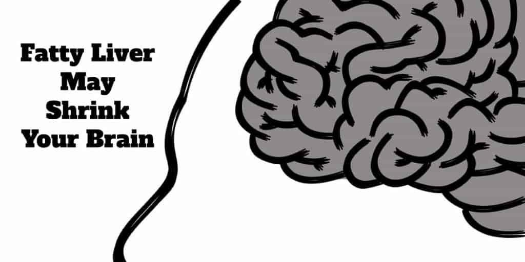 shrink your brain